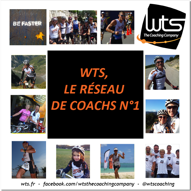 expertise-reseau-coach-wts-n1