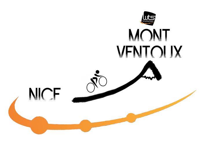 logo-nmv7(1)